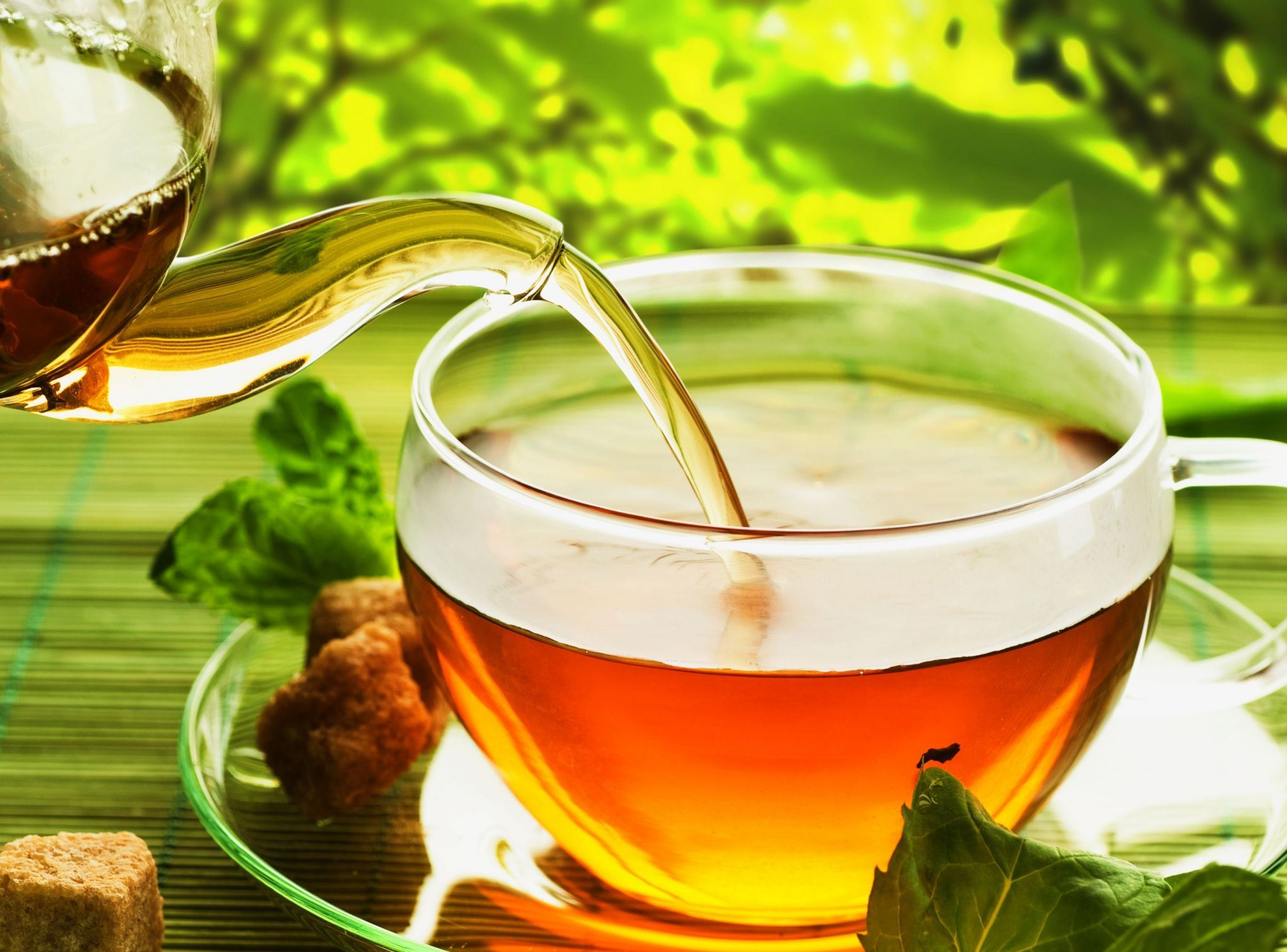 does-green-tea-help-you-lose-weight