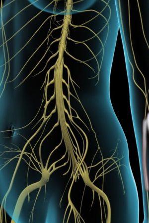 Treatment-for-Fibromyalgia