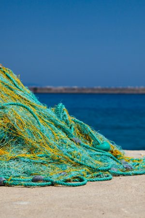 fishing_net
