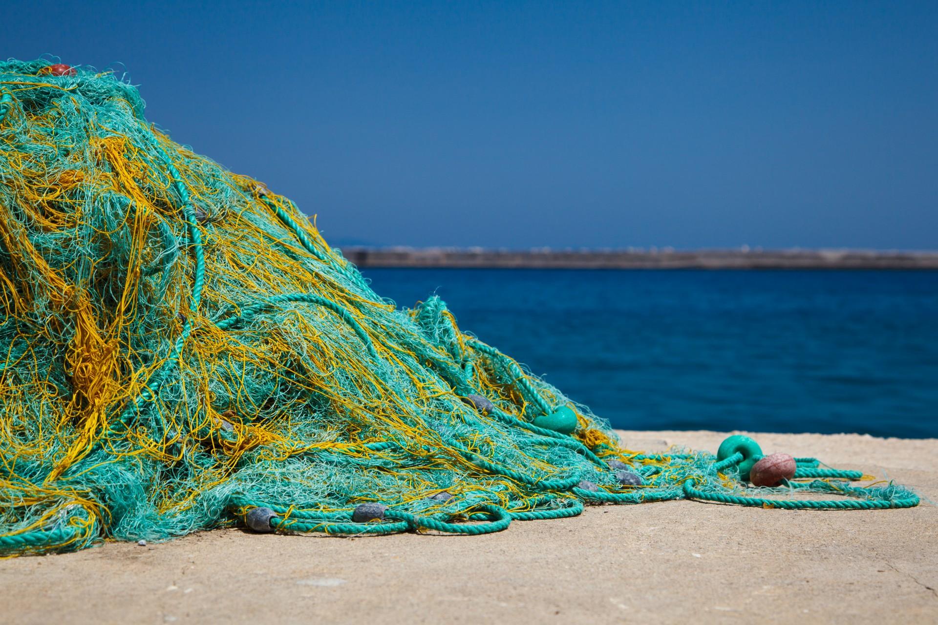 Finding the Best Fishing Net